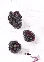 Three Black Berries on a White China Plate