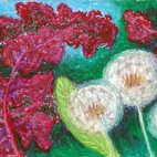 Amaranth and Dandelions